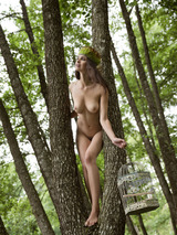 Jasmine A In The Nature 11